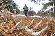 A young hunter finds a shed whitetail antler