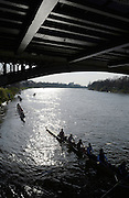 Barnes, Greater London, United Kingdom. Crews, shelter from the wind as the race abandoned due to the conditions, 2014 Head of the River Race, Mortlake to Putney, Championship Course River Thames;  Saturday   29/03/2014   [Mandatory Credit; Peter SPURRIER/Intersport Images].