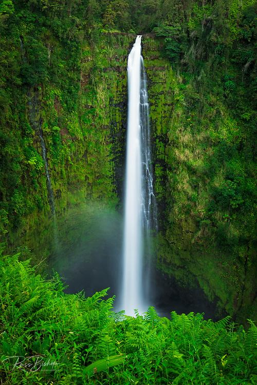 Akaka Falls, Akaka Falls State Park, The Big Island, Hawaii USA