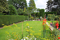 bedding plants and gladioli in a small suburban back garden with a lawn