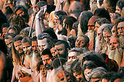 Hundreds of Nagas (naked ascetic holy men) stand on the riverbank of the Shipra River in Ujjain, Madhya Pradesh, India just moments before plunging in for a ritual bath to mark the Kumbh Mela festival. (From the book What I Eat: Around the World in 80 Diets.)  The Kumbh Mela festival is a sacred Hindu pilgrimage held 4 times every 12 years, cycling between the cities of Allahabad, Nasik, Ujjain and Haridwar.  Participants of the Mela gather to cleanse themselves spiritually by bathing in the waters of India's sacred rivers.  Kumbh Mela is one of the largest religious festivals on earth, attracting millions from all over India and the world.  Past Melas have attracted up to 70 million visitors.