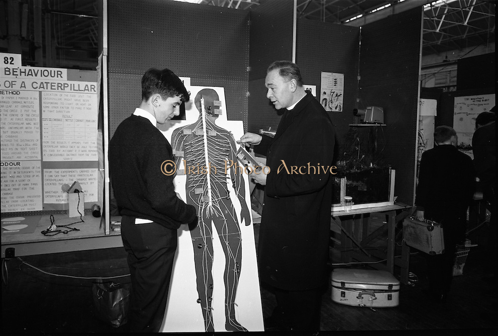 """03/01/1967.01/03/1967.3rd January 1967.The third annual Aer Lingus Young Scientist Exhibition at the RDS..Padhraic Gearoid O Croibhin, Colaiste Iognaid Gaillimh, explains his exhibit """"The Human 'Telephone Exchange' The Nervous System Illustrated by Models' to Fr. PU O'Neill of the Christian Brothers School Mullingar ...."""