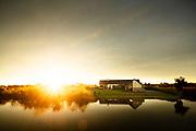 Backyard cricket at sunset, Pegasus township