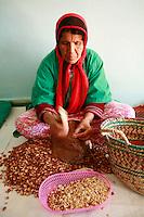 Women's Argan Oil Cooperative in Tadzi, Morocco, near Essaouira Argan Oil women's Cooperative near Essaouira, Morocco