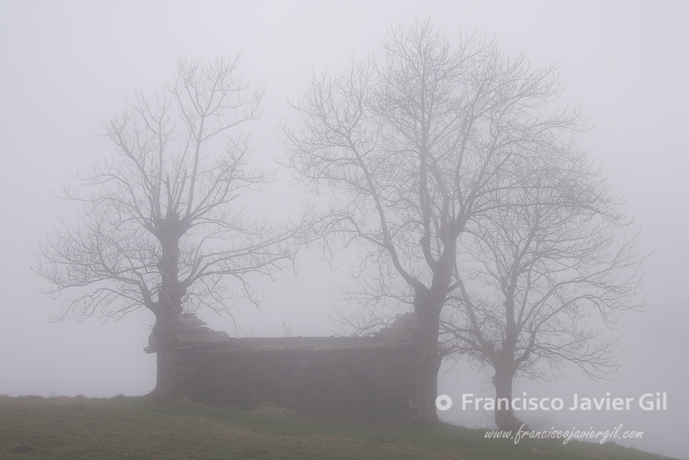 Fog in the port of El Caracol, Cantabria, Spain