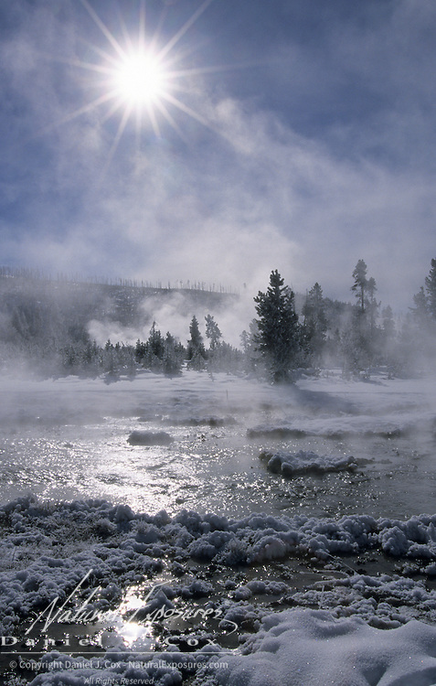 A thermal area during the winter in Yellowstone National Park.