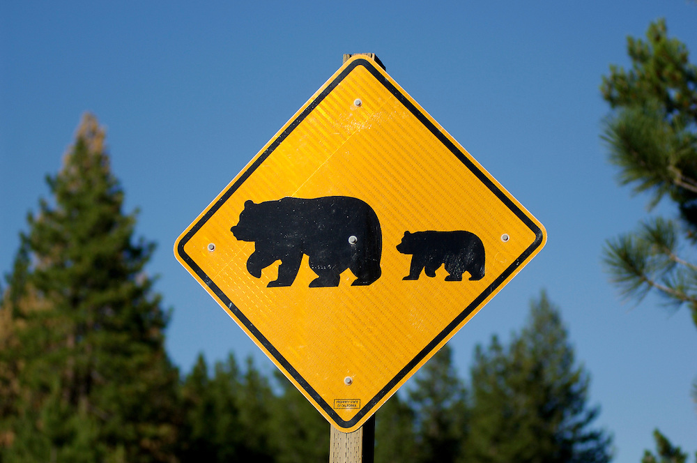Street warning sign for bears, Tahoe City, California, United States of America
