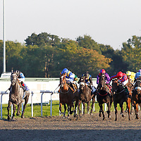 Kempton 30th September