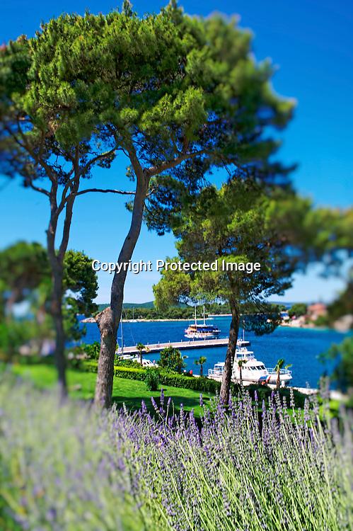 Le chateau Martinis Marchi à Maslinica sur l'île de Solta. Ce domaine réalisé il y a 300 ans pour la défense de lîle est devenu un refuge discret pour les amateurs de retraites grand luxe. La toute récente marina permet d'accueillir yacht et bateau à la recherche d'anonymat et de tranquilité.