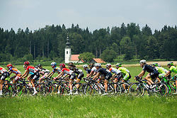 Peloton during the Stage 1 (102,5 km) from Kamnik to Ljubljana at 26th Giro Rosa 2015 Women cycling race, on July 4, 2015 in Kamnik,  Slovenia. Photo by Vid Ponikvar / Sportida