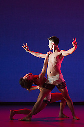 "© Licensed to London News Pictures. 03/12/2013. London, England. Pictured: Hian Ruth and Lee-Yuan Tu dancing. The Shobana Jeyasingh dance group perform the world premiere ""Strange Blooms"" at the Queen Elizabeth Hall. ""Strange Blooms"" was commissioned by the Southbank Centre to celebrate the company's 25th anniversary. Photo credit: Bettina Strenske/LNP"