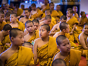 03 APRIL 2016 - CHIANG MAI, THAILAND:   Novices, young Buddhist monks, and older monks participate in a meditation and prayer at Wat Chedi Luang in Chiang Mai. The meditation ceremony was in honor of the birthday of Her Royal Highness Princess Maha Chakri Sirindhorn, the daughter of Bhumibol Adulyadej, the King of Thailand. The Princess was born on April 2, 1955. She is revered by Thais and special ceremonies in her honor are held in temples throughout Thailand.     PHOTO BY JACK KURTZ