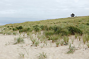 National Seashore, Cape Cod, Massachusetts, USA