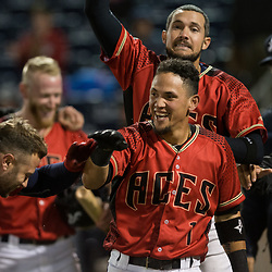 Reno Aces v. New Orleans Baby Cakes (35 photos)