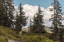 THEMENBILD - Wanderer mit Kinder auf einem Weg, aufgenommen am Geierkogel, Viehhofen, ÖSterreich am 04. Juni 2015 // Hikers with children on a path, Geierkogel, Viehhofen, Austria on 2015/06/04. EXPA Pictures © 2015, PhotoCredit: EXPA/ JFK