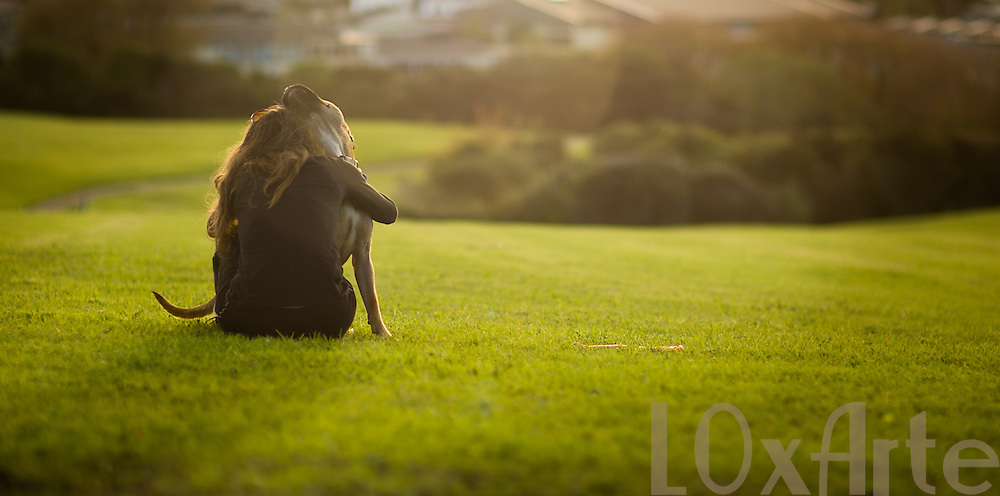 Woman embraces staffordshire terrier / bull mastiff cross dog on a green field. The image is available for commercial licensing through Arcangel Images. ID# AA1644968 . Contact LOxArte for Fine Art Prints.