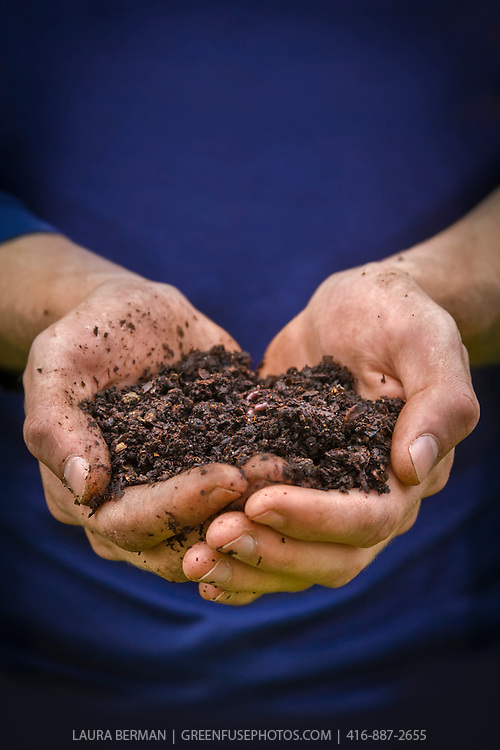 A handful of rich, dark compost with a worm in the middle, against a royal blue background.