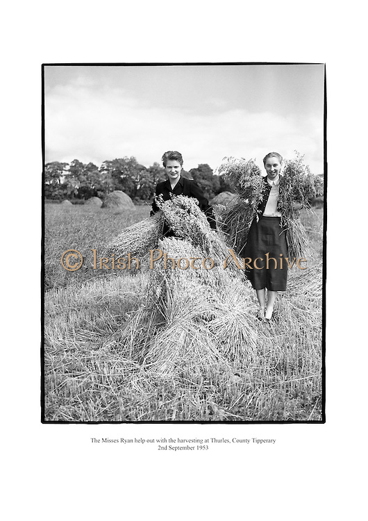 The Misses Ryan help out with the harvesting at Thurles, County Tipperary - 2nd September 1953.