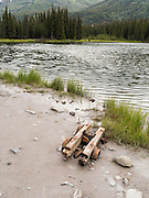 The remains of a an old mining truck at Horseshoe Lake, Denali National Park, Alaska. A cow moose and calf are in the background, upper middle..