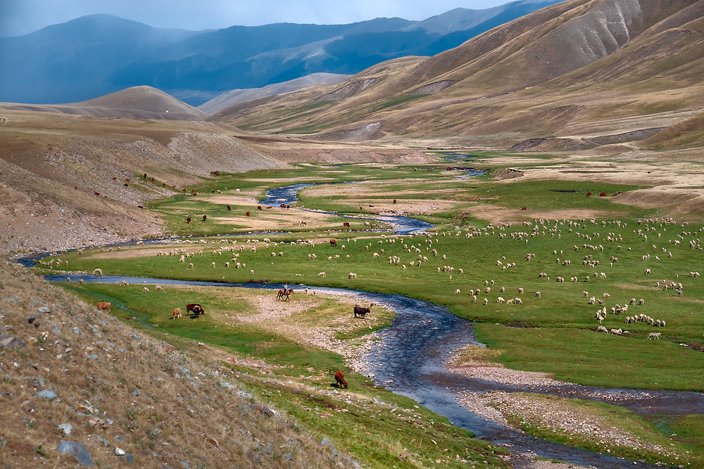 Except for a few settled farmers, most Kazakhs have traditionally lived by animal husbandry, migrating to look for pasturage as the seasons change. In spring, summer and autumn, they live in collapsible round yurts and in winter build flat-roofed earthen huts in the pastures.
