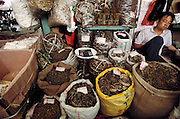 A vendor naps in his stall at the old Qing Ping Market in Guangzhou, China. He sells dried snakes, scorpions, beetles, centipedes, shark fins, and caterpillar fungus..Image from the book project Man Eating Bugs: The Art and Science of Eating Insects.