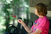Hand Feeding Hummingbirds at Lake Hope State Park, near Zaleski, Ohio.