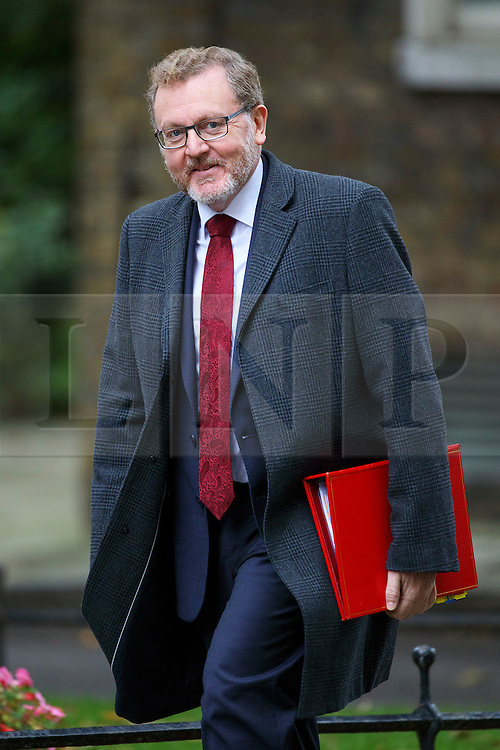 © Licensed to London News Pictures. 18/10/2016. London, UK. Scottish Secretary DAVID MUNDELL attends a cabinet meeting in Downing Street on Tuesday, 18 October 2016. Photo credit: Tolga Akmen/LNP