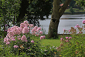 Natural Garden 999