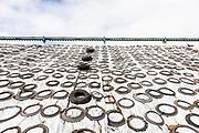 California, Stewart and Jasper almond company, stoccaggio dei gusci di mandorle ricicalti e riutilizzati in diversi ambiti