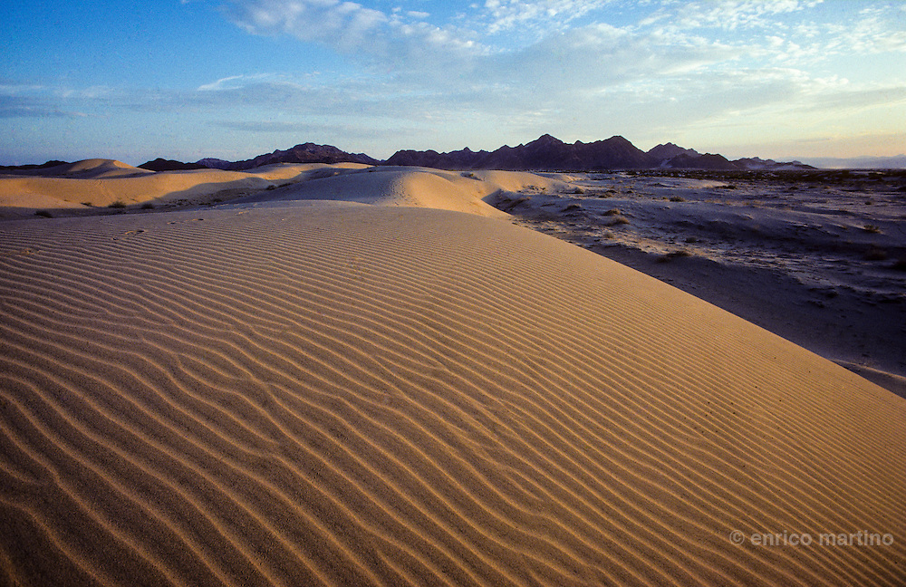 Sonora desert, sand dunes