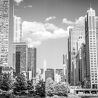 Chicago cityscape black and white photo. Picture includes Chicago buildings along the Chicago River facing East with Merchandise Mart, Marina City Towers, Trump Tower, and the United Airlines building.