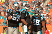 Carolina Panthers quarterback Cam Newton (1) celebrates during the Panthers 20-16 win over the Miami Dolphins at Sun Life Stadium on Nov. 24, 2013 in  in Miami Gardens, Florida.                 ©2013 Scott A. Miller