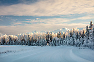 Low winter sun illuminates the Chugach Mountains and hoarfrost on trees along a winding road in Southcentral Alaska. Afternoon.