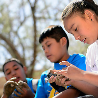 050113  Adron Gardner/Independent<br /> <br /> Fourth-grade-student from Rocky View Elementary Taylor Estrada compacts a mud pie to foster seed germination during Water Awareness at Red Rock Park Wednesday.