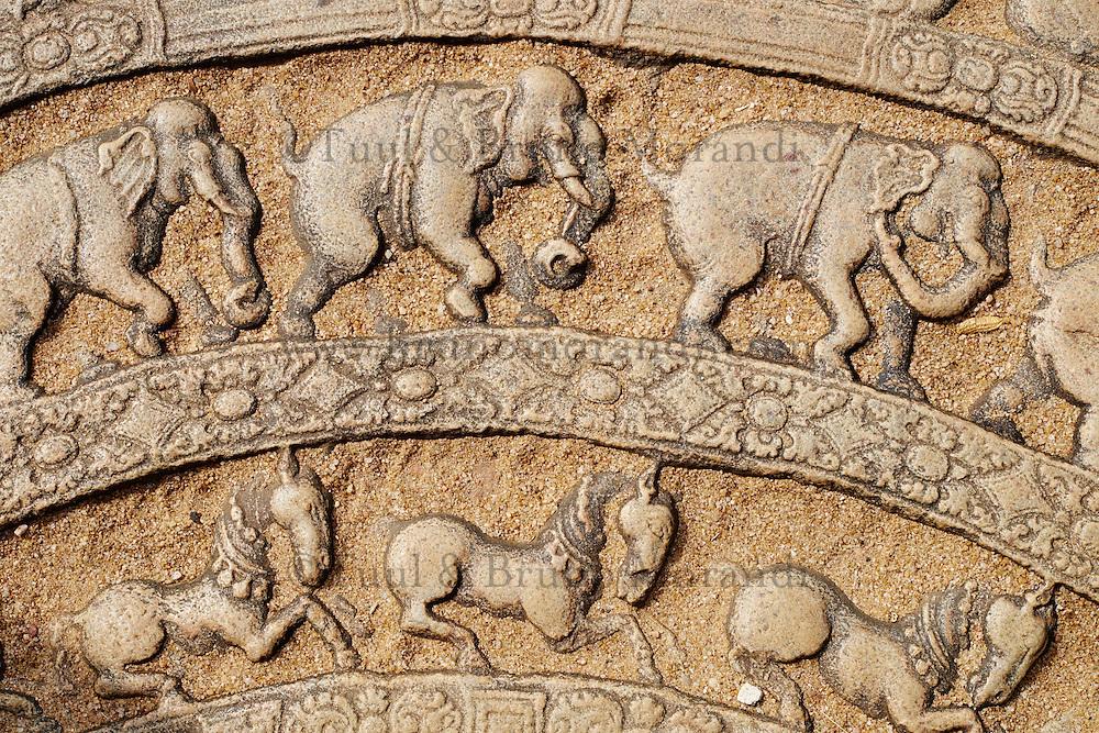 Sri Lanka, province du Centre-Nord, cité historique de Polonnaruwa, classée au Patrimoine Mondial de l'UNESCO, quadrilatere, terrasse de la dent, vatadage, chambre des reliques, pierre de lune // Sri Lanka, Ceylon, North Central Province, ancient city of Polonnaruwa, UNESCO World Heritage Site, quadrangle, Vatadage temple, moon stone