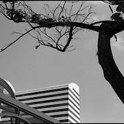 Plaza Altamira, Chacao - Caracas, Venezuela 2004<br /> Photography by Aaron Sosa
