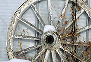 Old Wagon Wheel, Metal Wagon Wheel, Barn, Barn Siding, Snow, Winter, farm, ranch, Winter, Minnesota