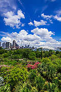 The Singapore Flyer and Flower Dome from the OCBC Skyway, Gardens by the Bay, Singapore, Republic of Singapore