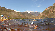 Swimmers racing for the World Wildlife Fund (WWF) Swim For Nature cause reach the end of the race during the Bridge House Mile Swim at the Berg River Dam in Franschhoek on the 2nd November 2013<br /> <br /> Photo by Ron Gaunt - WWF - Sportzpics
