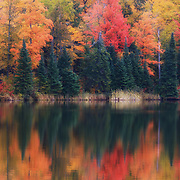 """Reflections on Lake Plumbago""<br />