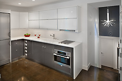 3222 Cherry Hill Lane Washington Dc Design build Anthony Wilder Kitchen