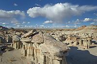 Sandstone hoodoos, Bisti Badlands, Bisti/De-Na-Zin Wilderness, New Mexico