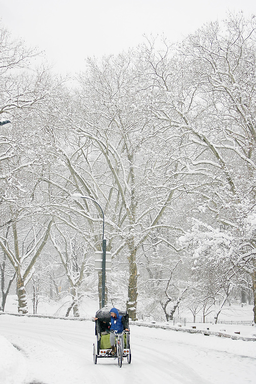 A pedicab makes it's way through central park  as the region is hit with a snow storm on February 26, 2009 in New York City. photo by Joe Kohen for The New York Times
