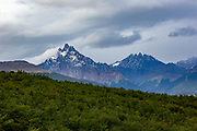 Coastal Trail, Tierra del Fuego National Park, Ushuaia, Argentina