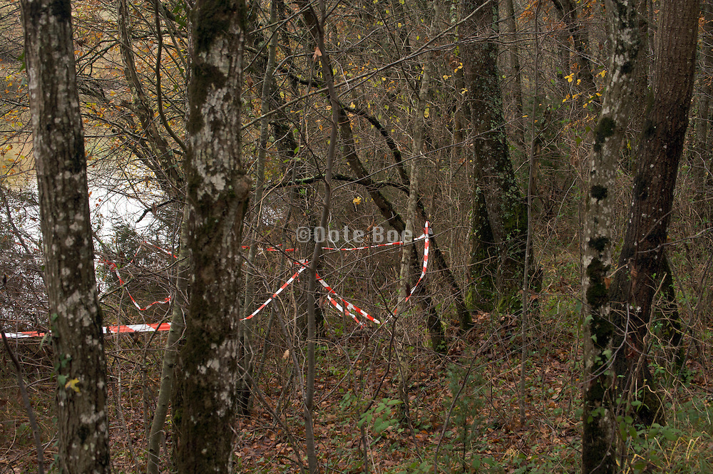red and white safety tape through woods