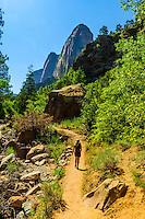 Woman hiking on the Taylor Creek Trail, Kolob Canyon, Zion National Park, Utah, USA.