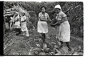 Coffee Plantation Workers - Nicaragua