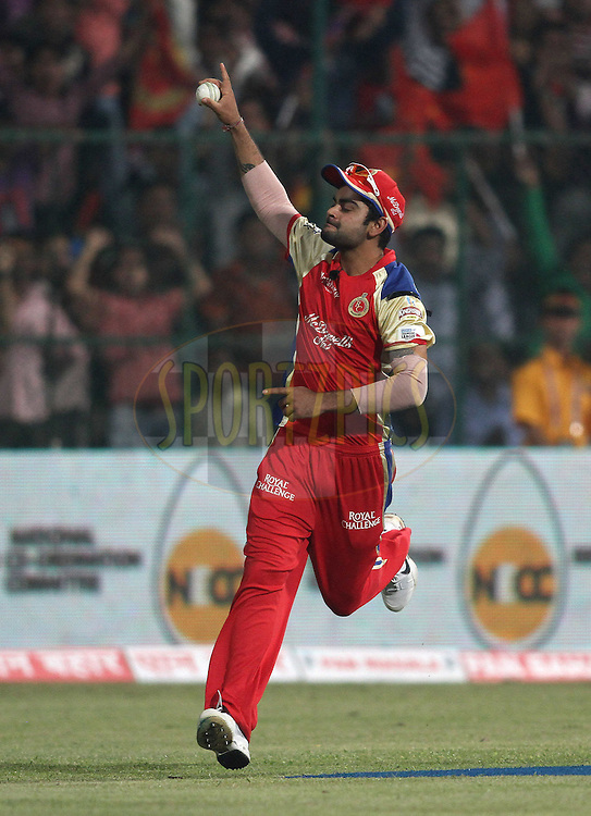 Virat Kohli of Royal Challengers Bangalore celebrates after taking a catch to dismiss Jon-Jon Smuts of the Warriors during match 1 of the NOKIA Champions League T20 ( CLT20 )between the Royal Challengers Bangalore and the Warriors held at the  M.Chinnaswamy Stadium in Bangalore , Karnataka, India on the 23rd September 2011..Photo by Shaun Roy/BCCI/SPORTZPICS