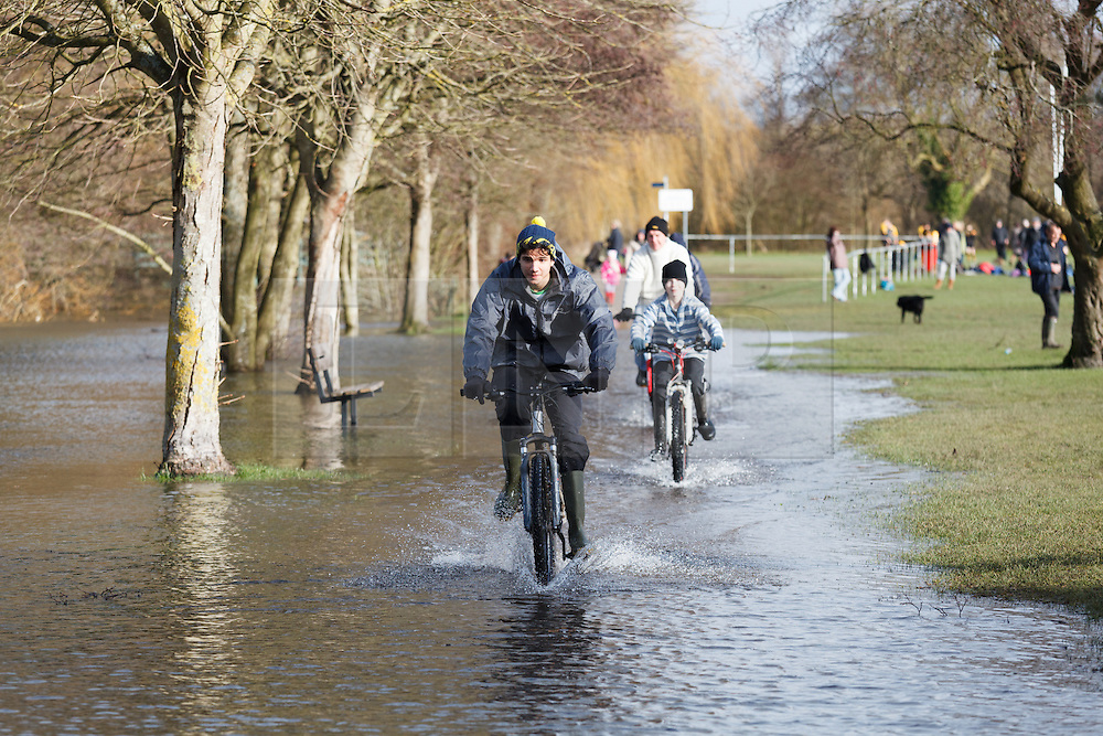 © Licensed to London News Pictures. 09/02/2014. Winchester, Hampshire, UK. People riding their bikes through flood water at River Park in Winchester. Water levels rose overnight in parts of the historic city where a flood warning has been issued by the Environment Agency for parts of the River Itchen. Photo credit : Rob Arnold/LNP