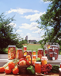 Americana assortment of fresh fruits, jellies and jams with bucolic farm landscape background.